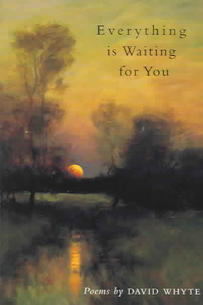 Everything Is Waiting for You By Whyte, David